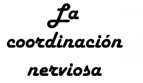 external image coor_nerviosa_por1.jpg?w=750&h=437