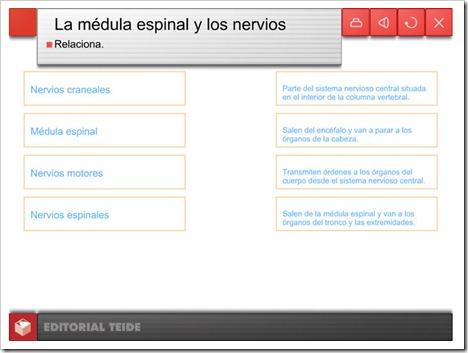 external image la-mdula-espinal.jpg?w=500