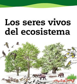 ecosistemaseresvivosevocacion